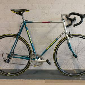 Batavus Champion Racing Line (1)
