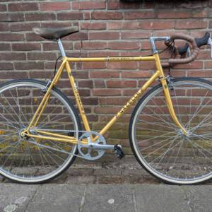 Gazelle champion mondial singlespeed